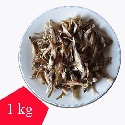 MOLA-1kg